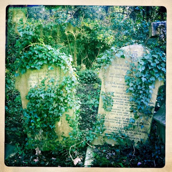 Highgate graves